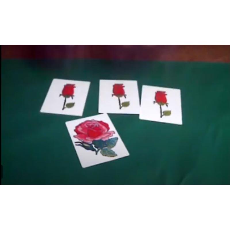 Mágica Carta do Botão em Rosa