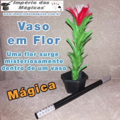 Vaso em Flor